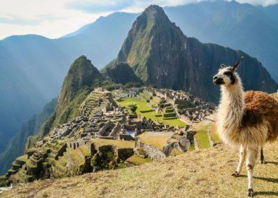 llama-at-the-machu-picchu-unesco-peru-andbeyond