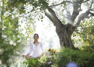 ananda - meditation 3